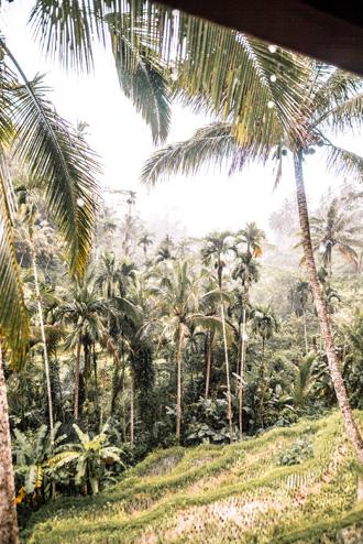 2018-01-02_Bali-53