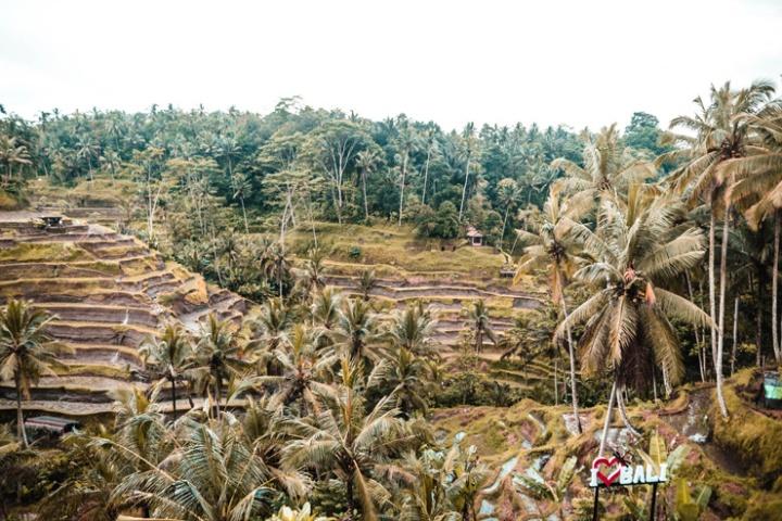 2018-01-02_Bali-64