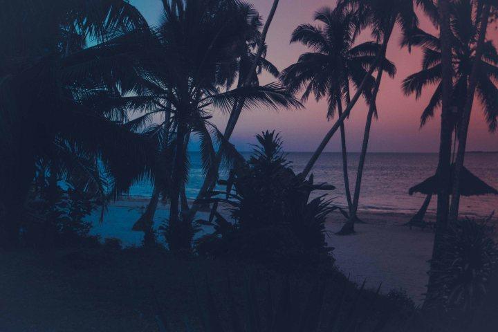 Zanzibar- (141 von 165)
