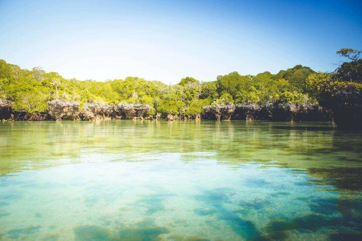 Zanzibar- (145 von 165)