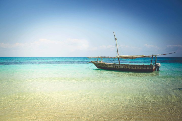 Zanzibar- (148 von 165)