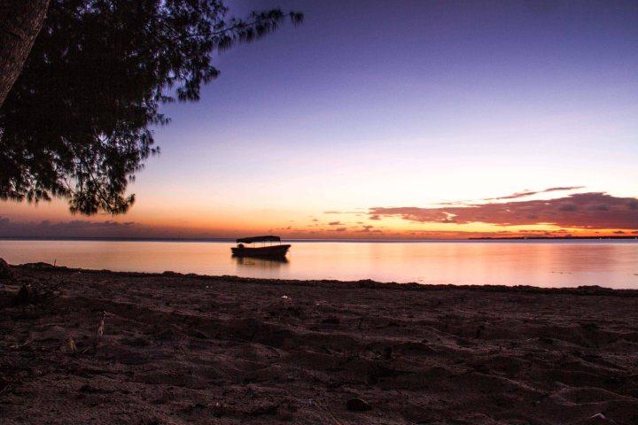 Zanzibar- (35 von 165)