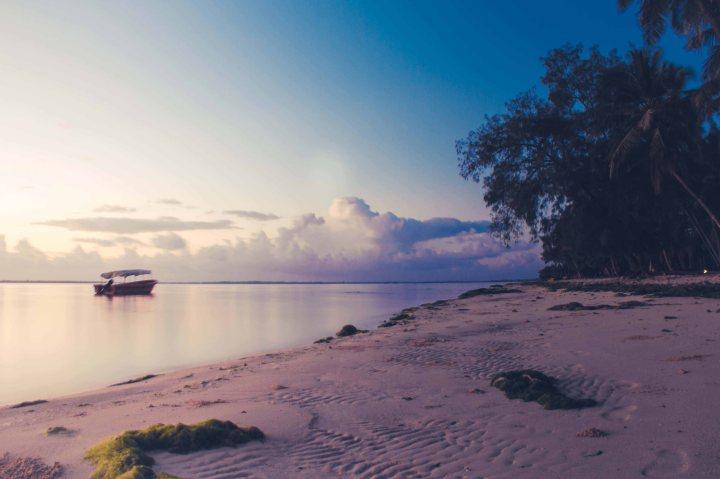 Zanzibar- (36 von 165)