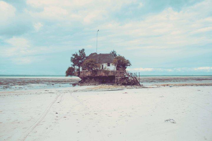 Zanzibar- (38 von 165)