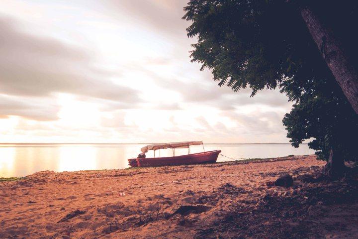 Zanzibar- (76 von 165)