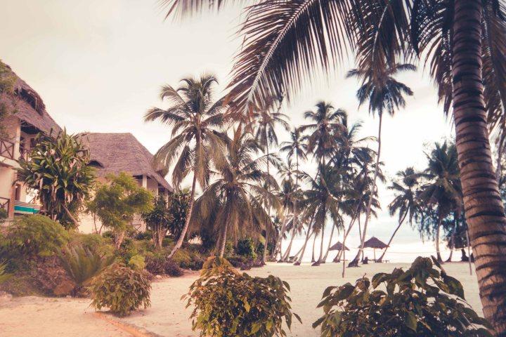 Zanzibar- (77 von 165)